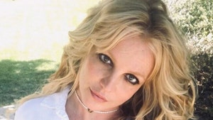 Britney Spears Wrote Post On 'Framing' Doc, Not Social Media Manager