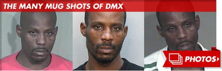 DMX Mug Shots