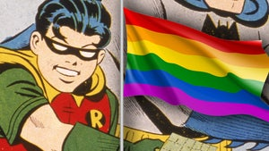 DC Comics Creator's Granddaughter Loves Robin Being Bisexual
