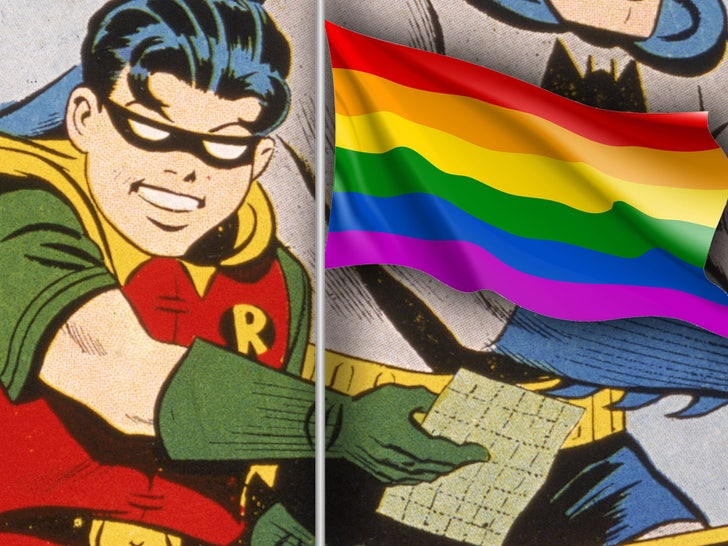 robin pride flag
