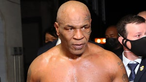 Overzealous Fan Tried Fighting Mike Tyson After Roy Jones Jr. Bout