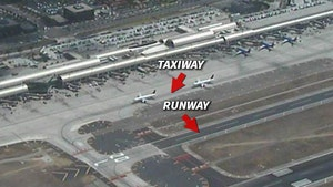 Harrison Ford FAA Investigation Delayed By Heavy Traffic (PHOTO)