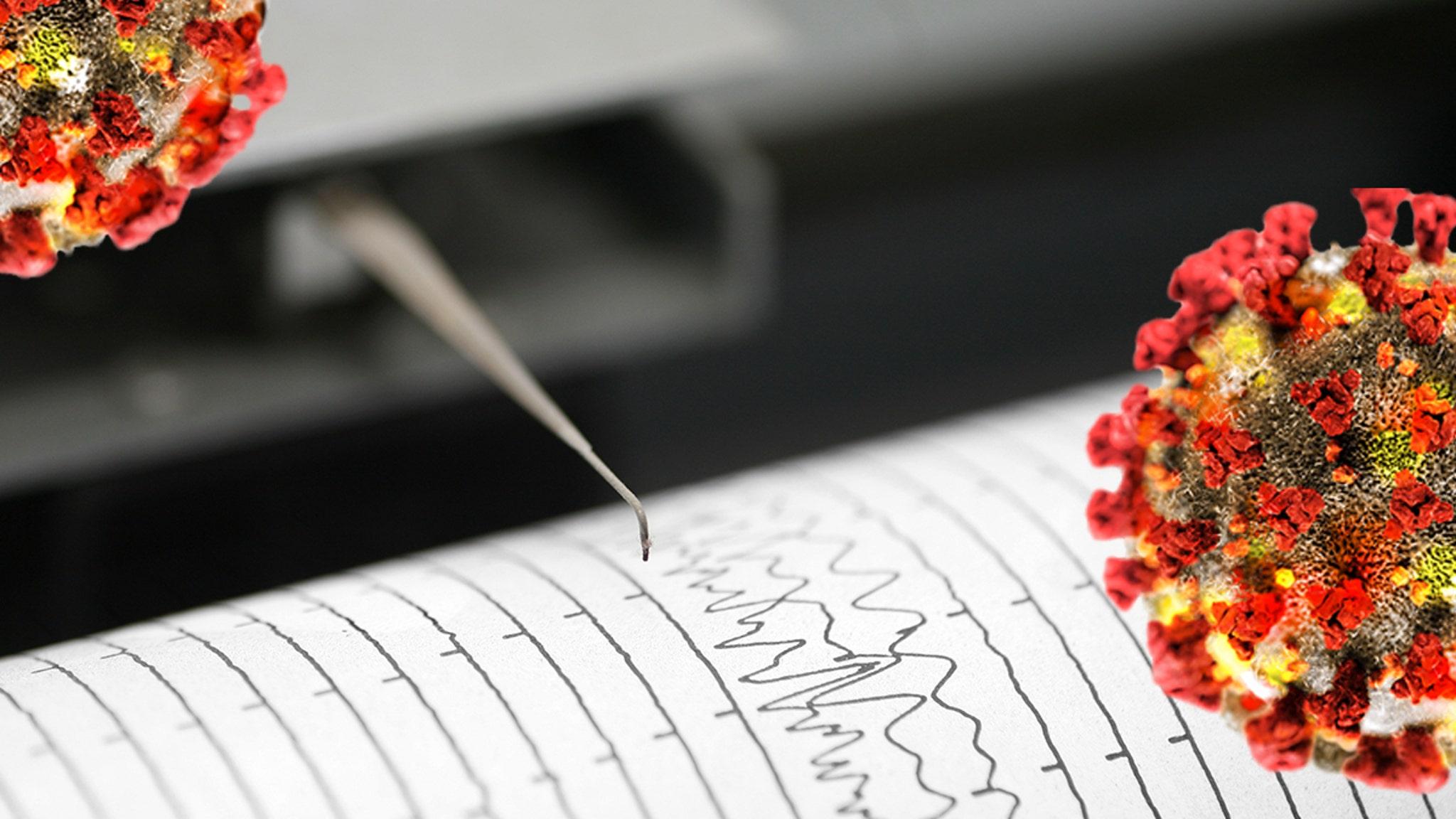Coronavirus Has Made the Earth Quieter, Seismologists Say