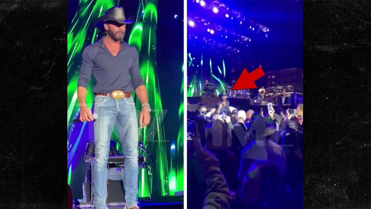 Tim McGraw Jumps Off Stage, Confronts Hecklers at Reno Show.jpg