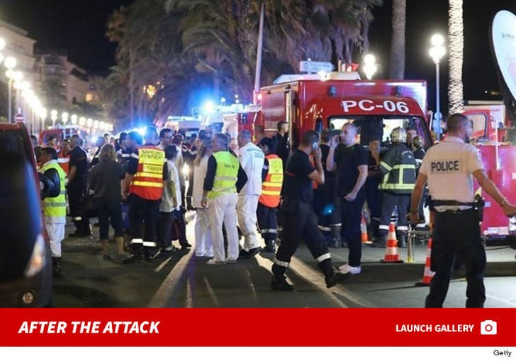 Nice Terror Attack -- The Aftermath