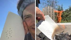 Ashton Kutcher Burns His Original Art for Futuristic Charity Auction