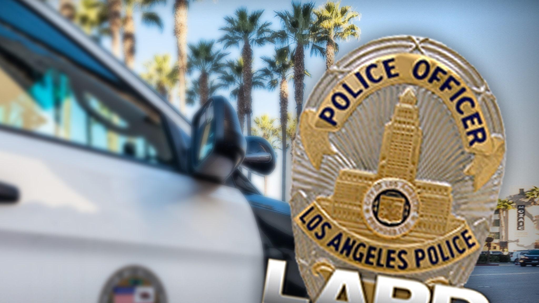 По словам полицейских, потеря отдела по борьбе с сексуальными преступлениями в полиции Лос-Анджелеса повлияла на громкие дела
