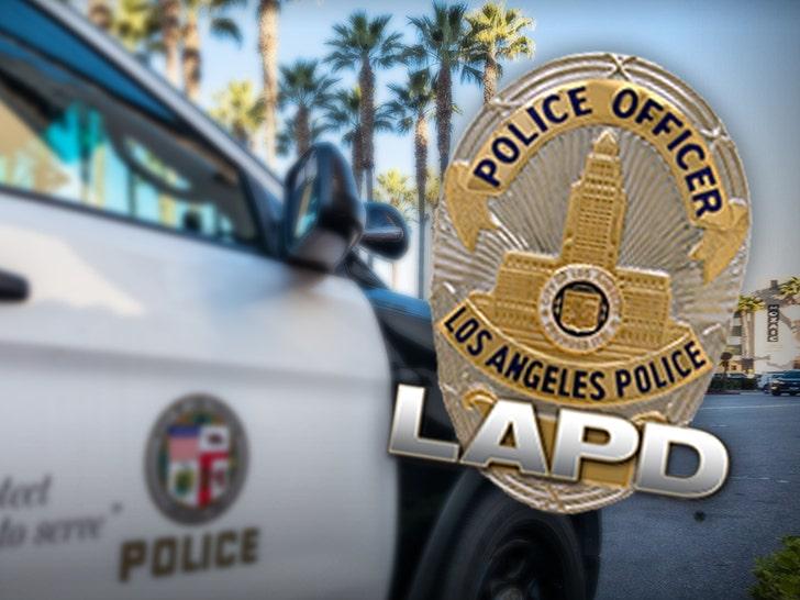 Loss of LAPD's RHD Sex Crimes Unit Hurts High-Profile Cases, Cops Say.jpg