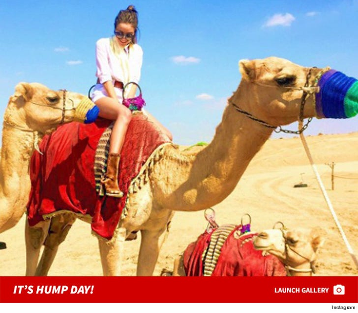 Celebs with Camels -- Happy Hump Day!