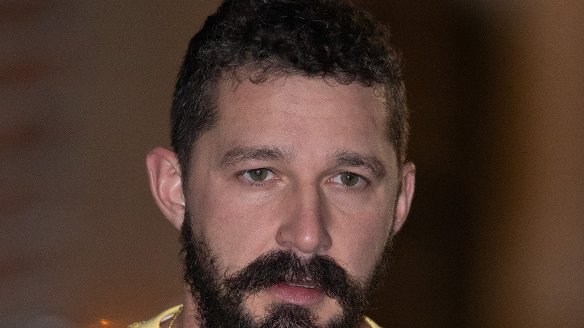 Shia LaBeouf Charged with Battery, Petty Theft Stemming from June Incident thumbnail