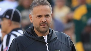 Baylor's Matt Rhule Spurns Giants, Agrees To Be Panthers' Head Coach