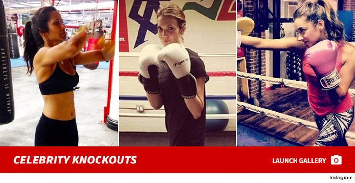 Celebrity Knockouts -- The Power Punching Pack