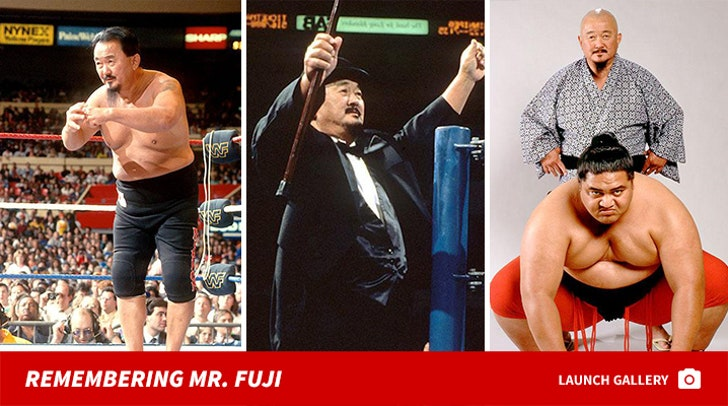 Remembering Mr. Fuji