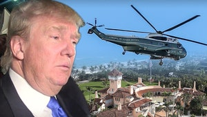 Donald Trump's Mar-a-Lago Helipad Being Removed