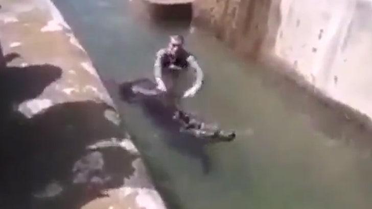 Man Jumps in Zoo Bear Enclosure, Tries Drowning Animal - EpicNews