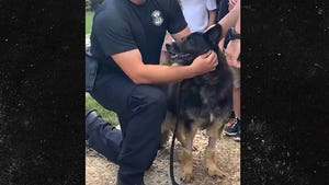 Cops Bid Farewell To Highway Patrol K-9 Diagnosed With Terminal Cancer