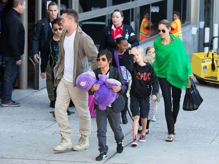 Brad and Angelina's Family Photos
