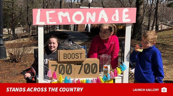 Lemonade Stands Across The Country Pics