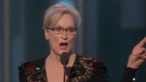 Donald Trump Fires Back at 'Hillary Flunky' Meryl Streep (VIDEO)