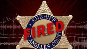 L.A. County Sheriff's Deputy Fired for Allegedly Having Sex at Universal