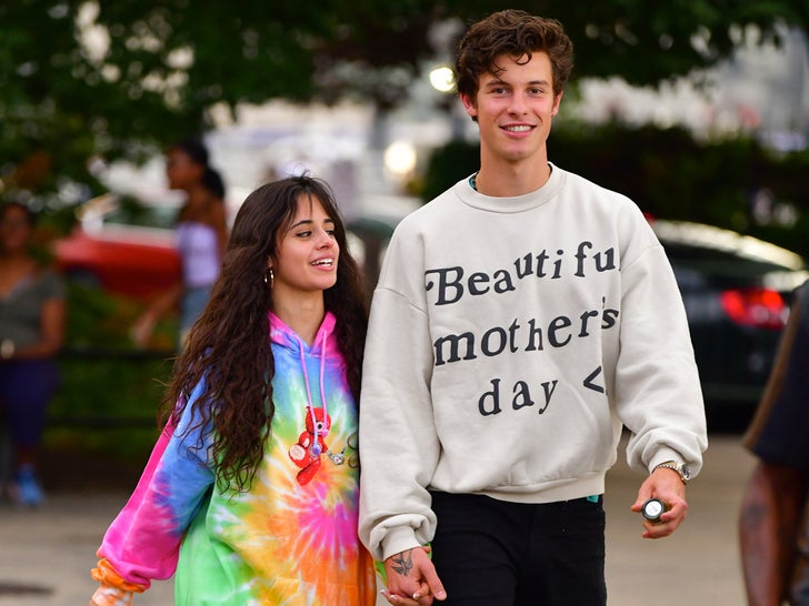 Shawn Mendes And Camila Cabello Together