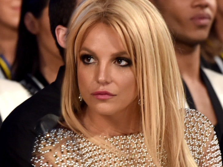 Britney Spears Self Quarantines For 2 Weeks To See Her Sons