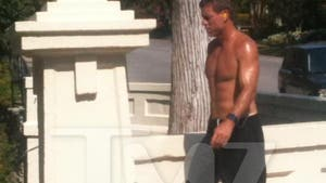 Troy Aikman -- How 'Bout Them Cowboys' ... ABS?!