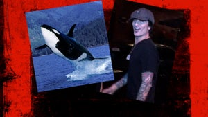 Tommy Lee's Save the Whale Sperm Crusade