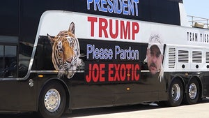 Joe Exotic's Legal Team Asks Trump to Free Joe in New Video
