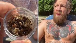 Conor McGregor Eats Dead Bees Out Of Jar, 'What The F**k Is This?!'