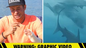 'Jackass' Star Sean McInerney Gets Emotional Discussing Shark Bite, Scary New Footage