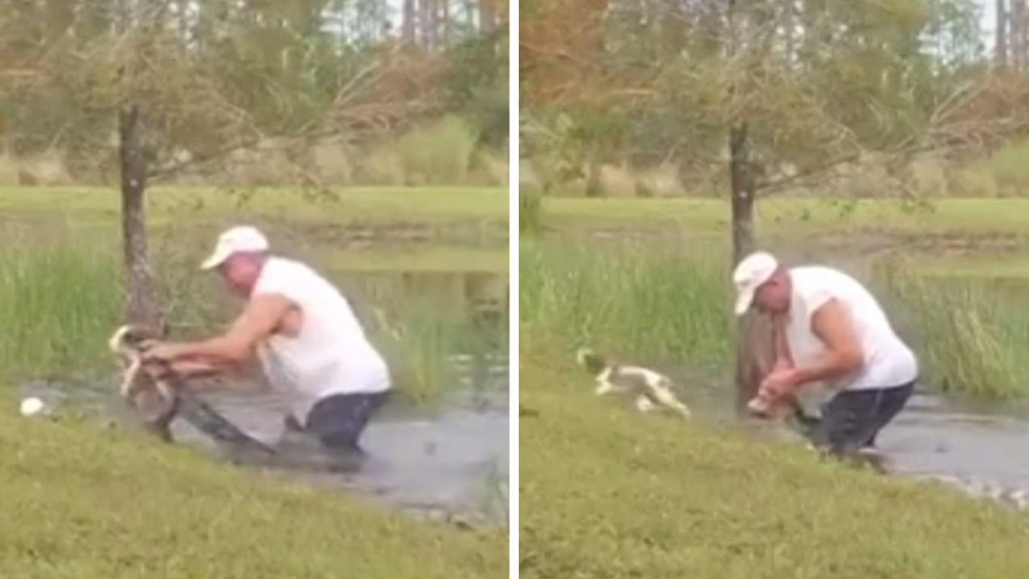Puppy Rescue Man Pries Gator's Mouth Open ... That's One Lucky Dog!!!