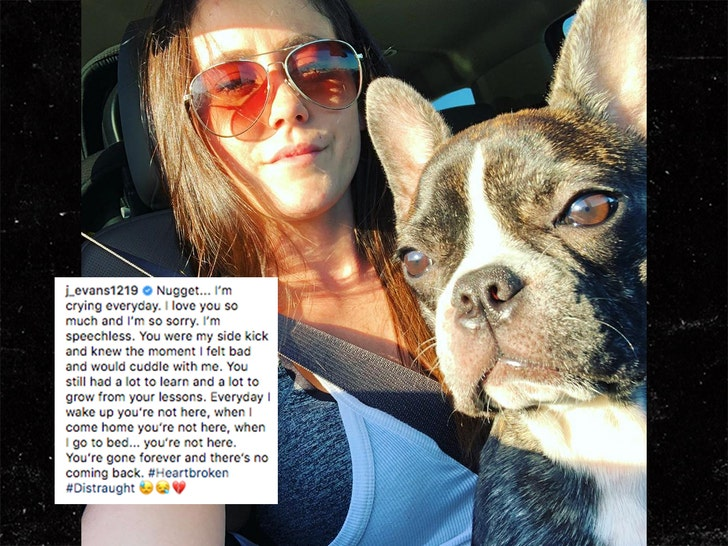 Jenelle Evan's Husband David Eason Investigated for Animal Cruelty