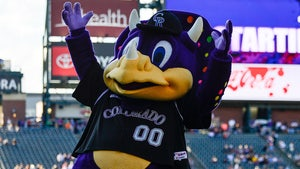 Rockies Fan Screamed Mascot's Name, Dinger, Not the N-Word, Team Confirms