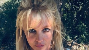 "Britney Spears Shuts Down Makeup Artist, Says ""I Write My Posts"""