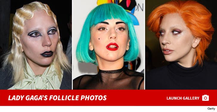 Lady Gaga's Follicle Photos