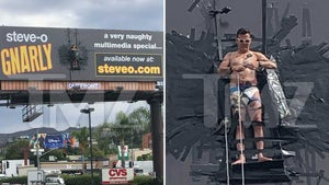 Steve-O Duct-Tapes Himself to Hollywood Billboard to Promote Project