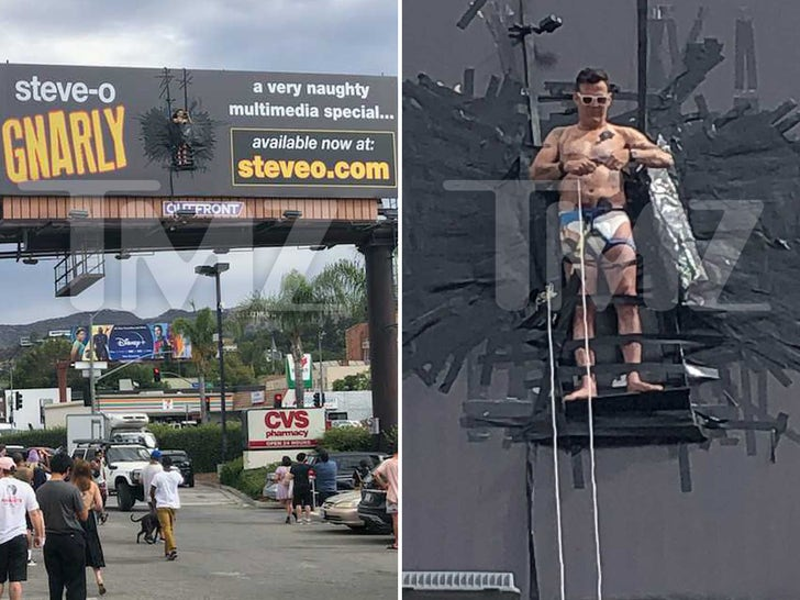 Steve-O -- The Gnarly Billboard Stunt