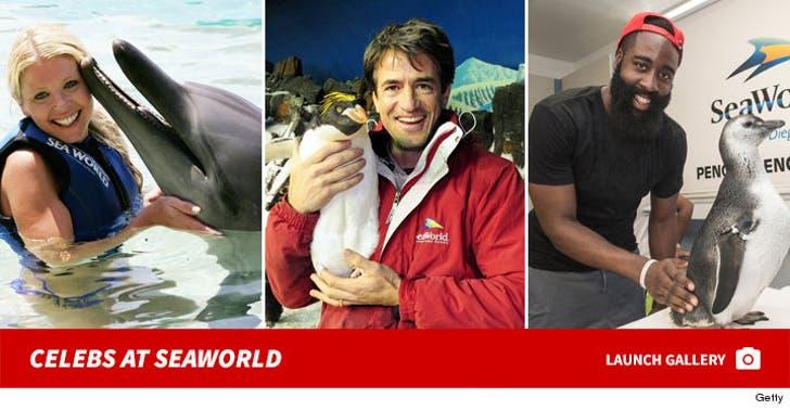 Celebrities at SeaWorld