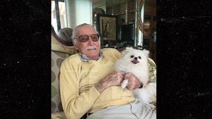 Stan Lee's Missing Dog Found & Returned by NFL Legend Jim Brown