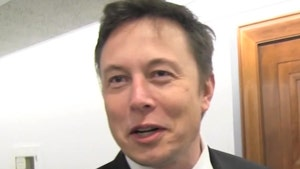 Elon Musk Lives in This 375-Square-Foot Casita That Costs $50,000