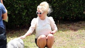 Britney Spears Overjoyed to Pet a Pig During Hawaiian Vacation