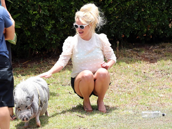 Britney Spears Piggin' Out On Vacation