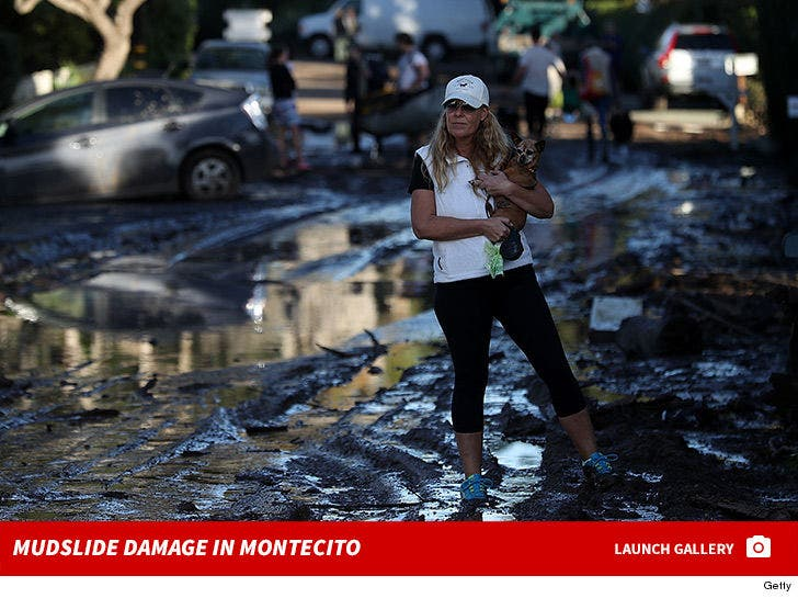 Mudslide Damage in Montecito