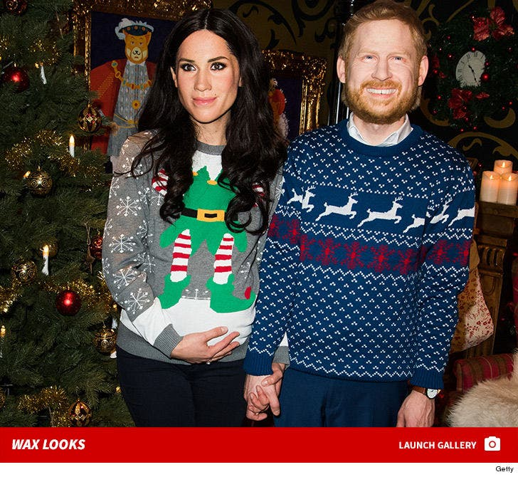 Meghan and Prince Harry -- Great Cover-Up in Berlin