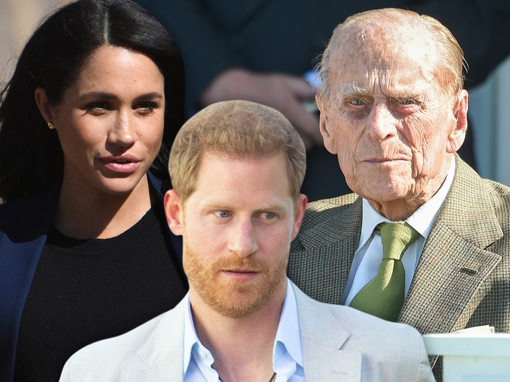 Prince Harry to Travel to UK for Prince Philip's Funeral, Meghan Won't.jpg
