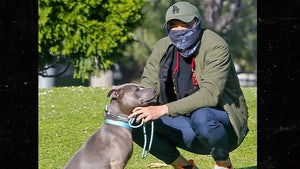 'Crazy Rich Asians' Henry Golding Takes Pit Bull for Walk on Heels of Attack