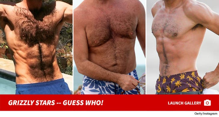 Stars Gettin' Grizzly -- Guess Who!