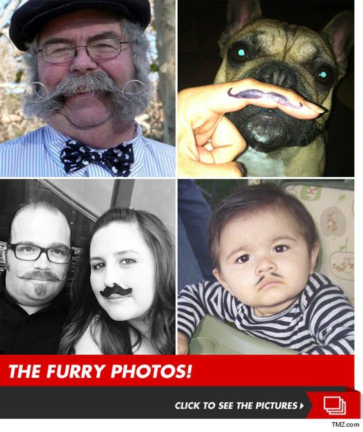 TMZ's Annual Movember Moustache Photo Contest