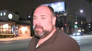 James Gandolfini's Family Blindsided -- Never Suspected Health Issues